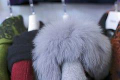 Fox羊毛衣领 库存图片