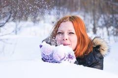 Fox в снежке стоковая фотография rf