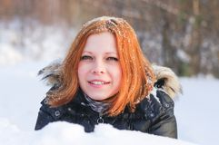 Fox в снежке стоковые изображения rf