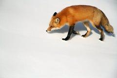 Fox на снежке стоковое изображение
