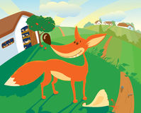 Fox. The fox has stolen the hen from a henhouse in broad daylight Royalty Free Stock Photo