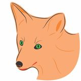 Fox. An a vector illustration of fox . Files included: Illustrator 8 EPS  and JPG Royalty Free Illustration