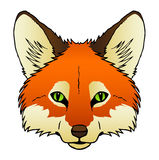 Fox. A hand drawn  of a red foxs face Royalty Free Stock Image