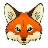 Fox Lizenzfreies Stockbild