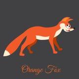 Fox anaranjado Imagenes de archivo