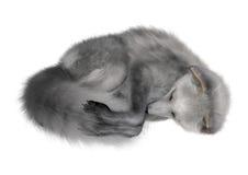 Fox arctique Photo libre de droits