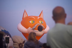 Fox Balloon ready to take off before sunrise Stock Photography