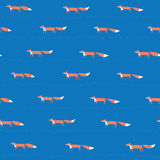 Fox blue seamless pattern Stock Images