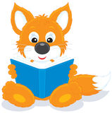 Fox cub reading a book Stock Image