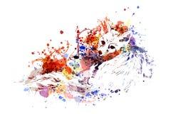 Fox da ilustração de cor do vetor Imagens de Stock