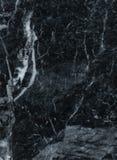 Fox de plata de la piedra de mármol de la losa imagenes de archivo