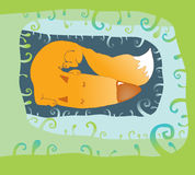 Fox de sommeil Image stock