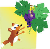 Fox e uvas Fotos de Stock