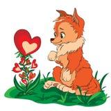 Fox in einer Reinigung, die Blume betrachtet Lizenzfreie Abbildung