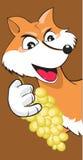 Fox et raisins Image stock