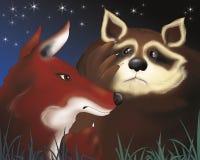 Fox et raton laveur effrayé par nuit Photographie stock