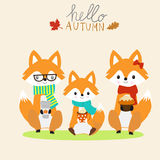 Fox family  with a cup of warm milk,coffee,cake autumn season.i Stock Image