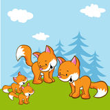 Fox family on meadow near the forest Royalty Free Stock Image
