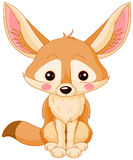 Fox fenek Zdjęcia Royalty Free