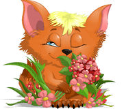 Fox with flowers. Fox which sits in flowers stock illustration