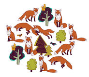 Fox forest color isolate objects white round. Royalty Free Stock Photo