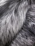 Fox fur Royalty Free Stock Photography
