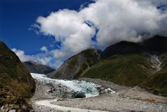 Free Fox Glacier Stock Photos - 19717913