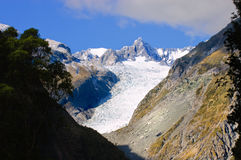 Fox Glacier Royalty Free Stock Photo