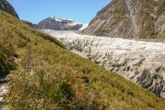 Fox Glacier New Zealand Stock Image