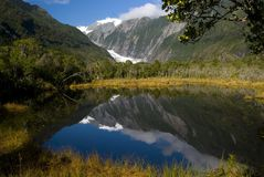 Fox Glacier Reflection. Image of the Fox Glacier in New Zealand reflecting in a pool Stock Photos