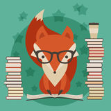 Fox in glasses with many books Stock Image