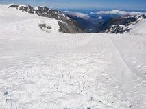 Fox-Gletscherbergblick Neuseeland Stockfotografie