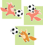 Fox goalkeeper Stock Image