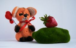 Fox in the hands holds a balloon heart made of wool handmade. He looks at the strawberry lying on the moss. Concept Hand made Royalty Free Stock Photography