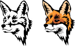 Fox. Head of red fox - color illustration and black silhouette Stock Photo