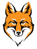 Fox head Stock Image