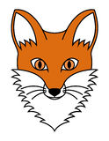 Fox head Stock Photo