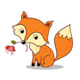 Fox is holding a flower in his mouth. Stock Photography