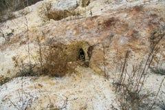 Fox hole on the slope. Of the sand hill. Zaporozhye region, Ukraine.November 2010 stock image