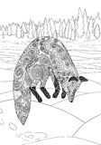 Fox hunt. Adult coloring page for antistress art therapy Stock Image