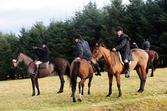 Fox hunting Stock Images