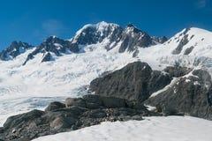 Fox i Josef lodowa alps halni z jasnym niebieskim niebem Obrazy Royalty Free