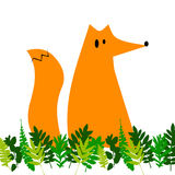 Fox illustration orange wild animal cartoon art  wildlife Stock Photos
