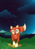 A fox Stock Photos