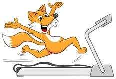 Fox is jogging on a treadmill. Vector illustration of a fox is jogging on a treadmill Stock Image