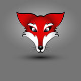 Fox-Kopf   Stockfoto