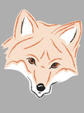 Fox-Kopf lizenzfreies stockfoto