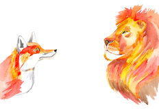 Fox and lion stock photography