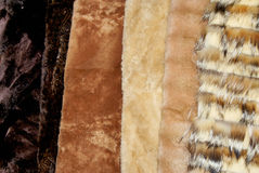 Fox and mink fur Royalty Free Stock Photos