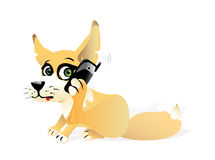 Fox with a mobile phone Stock Image